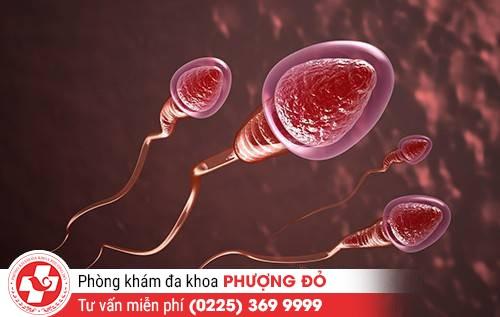 Triệu chứng nhận biết xuất tinh ra máu ở nam giới